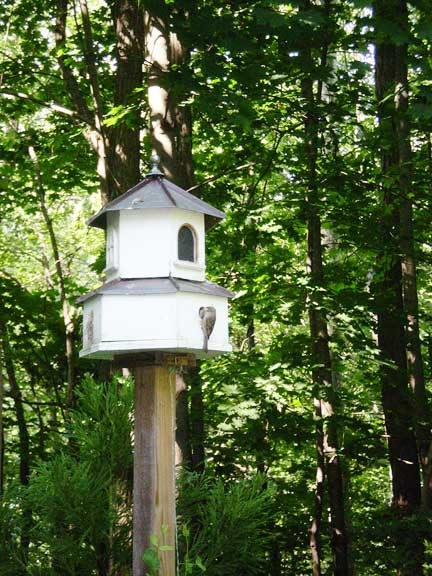 Birdhouses can be built for specific trees and areas.
