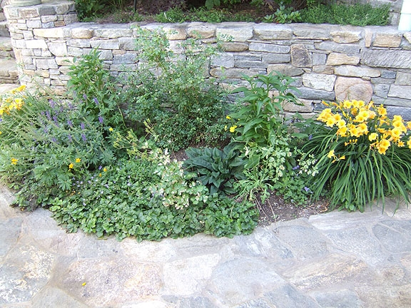 Small planting areas help soften stonework.