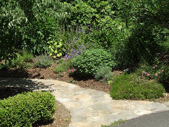 Plantings on both sides of an entrance way give the feeling of security.