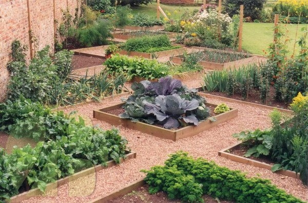 Fruit/vegetable gardens create beauty all year round, using paths, stone etc.