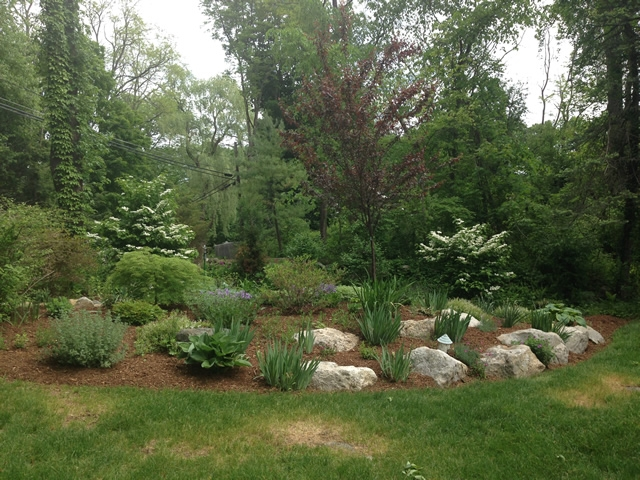 Rock Garden After
